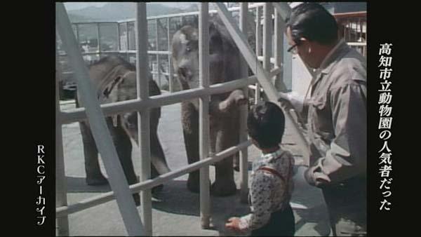 高知城 高知市立動物園