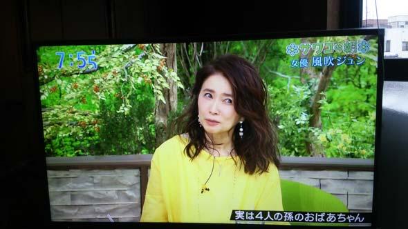 風吹ジュン 妖精 樹木希林 西城秀樹 阿川佐和子